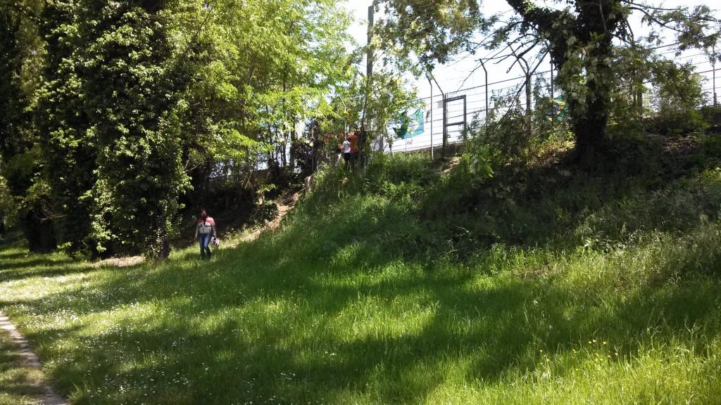 Outside of Tamburello, approach